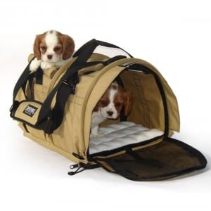 2. SturdiBag Divided Large Pet Carrier, Large Divided Pet Carrier 2 in 1 Pet Carrier Tote