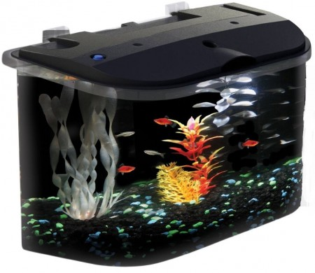 1. Aquarius Aq15005 Aquarius 5 Rounded 5-Gallon Aquarium Kit