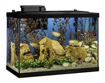 5. Tetra Aquarium Kit, 20-Gallon