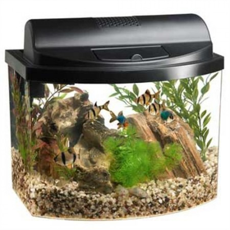 8. Aqueon Mini Bow 2.5 Gallon Desktop Aquarium Kit