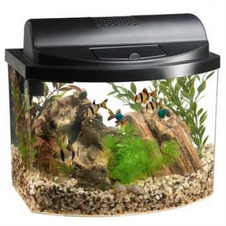 8. Aqueon Mini Bow 2.5 Gallon Desktop Aquarium Kit