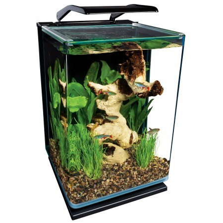 9. Marineland ML90609 Portrait Aquarium Kit, 5-Gallon