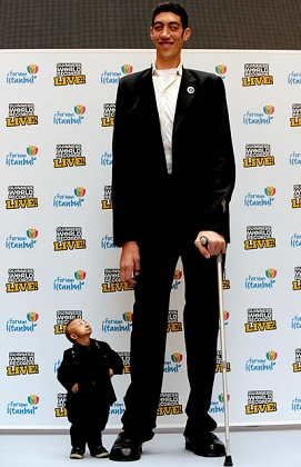 Top 10 Tallest Men in the World - Top 10 Review Of